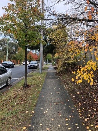 Autumn-Learn-English-Melbourne